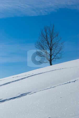 Winterlandschaft - Winter landscape stock photo, Winterlandschaft - Winter landscape by Wolfgang Heidasch