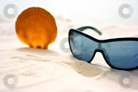 Seashell and sunglasses stock photo, Sunglasses and shell on the sand of the beach by Dmitry Rostovtsev