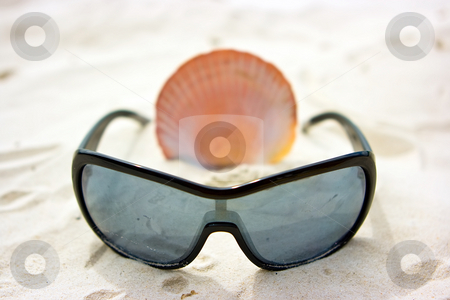 Still life with sunglasses and shell stock photo, Still life picture with sunglasses and shell on the sandy beach by Dmitry Rostovtsev