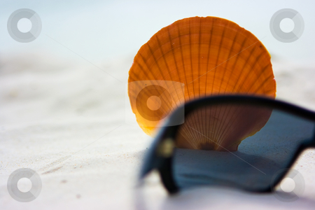 Shell and sunglasses stock photo, Shell with sunglasses on the summer beach by Dmitry Rostovtsev