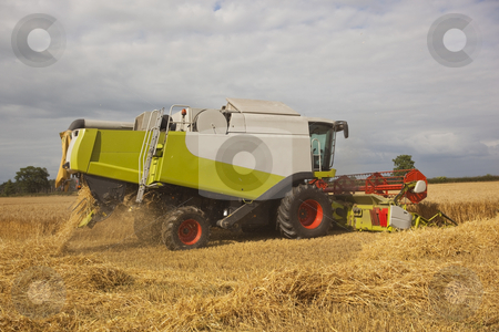 Combine harvester in action stock photo, A combine harvester cutting a barley field in summer by Mike Smith