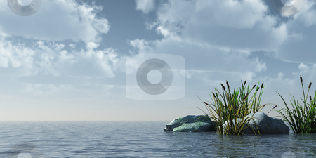 Reed stock photo, Reed and stones on water in front of blue sky - 3d illustration by J?