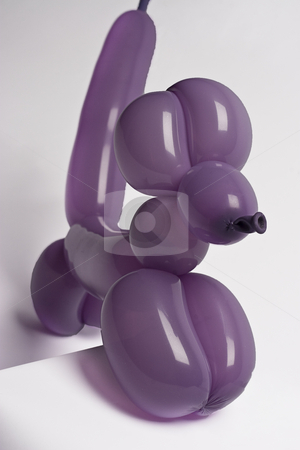 Purple balloon dog stock photo, Purple balloon dog climbing a pedestal by Yann Poirier