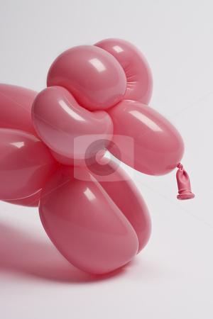 Pink balloon sheep stock photo, Close up of a pink balloon sheep by Yann Poirier