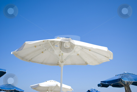 Umbrella on beach stock photo, White and blue umbrellas on sunny beach by Desislava Dimitrova