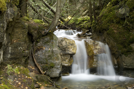 Small Waterfall stock photo, A beautiful Waterfall surounds by a forest by Sharron Schiefelbein