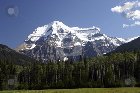 View of Mountain Robson stock photo, View of Mt Robson by Sharron Schiefelbein