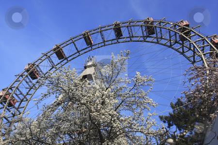 358 Giant Ferris wheel Riesenrad stock photo, Riesenrad giant ferris wheel is over 100 years old. by Sharron Schiefelbein