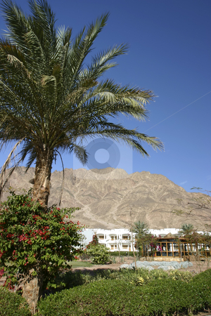Resort in Dahab Egypt stock photo, Beautiful Resort with mountains in the background by Sharron Schiefelbein