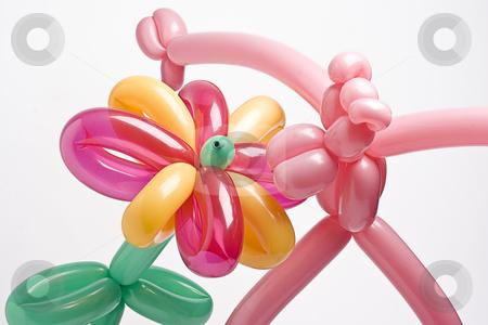 Smelling balloon flower stock photo, A pink balloon panther smelling a multi-colored balloon flower by Yann Poirier