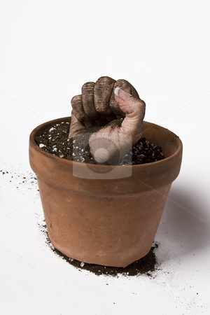 Growing fist stock photo, Women fist coming out of a pot of earth by Yann Poirier