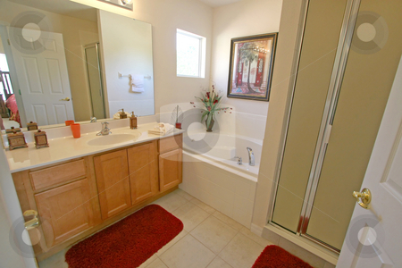 Master Bathroom stock photo, A Master Bathroom in a House in Florida. by Lucy Clark