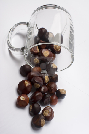 Spilled nuts stock photo, Chestnuts spilled from glass by Yann Poirier