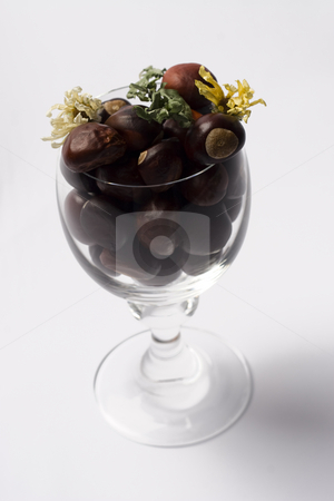 Nutty flowery wine stock photo, Wine glass fill with chestnut and a flower by Yann Poirier