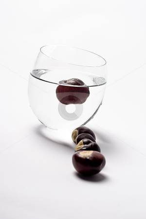 Cup of nuts stock photo, Glass cup filled with water containing one chest nut, in the foreground, four chestnut are forming a line in front of the cup by Yann Poirier