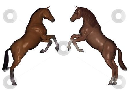 Attacking horses stock photo, 3D rendered horses isolated on white background by Patrik Ruzic
