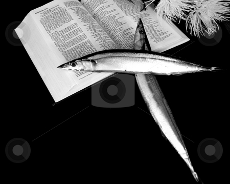 Holy Macarol stock photo, Conceptual image of two fish (Macarol) in the shape of a cross on a bible. by Cora Reed