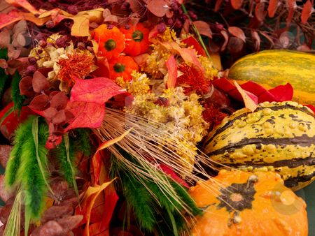 Fall theme stock photo, FAll background with gordes by Cora Reed