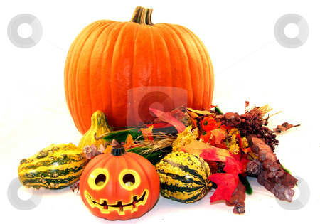 Holiday centerpiece stock photo, Fall holiday centerpiece with a carved and uncarved pumpkin by Cora Reed