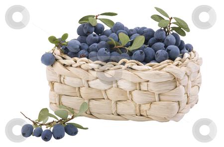 Small basket, full of fresh blueberries stock photo, Small basket, full fresh blueberries isolated on white background by Valery Kraynov