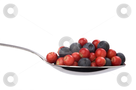 full spoon of blueberries and cranberries stock photo, full spoon of blueberries and cranberries isolated on white background by Valery Kraynov