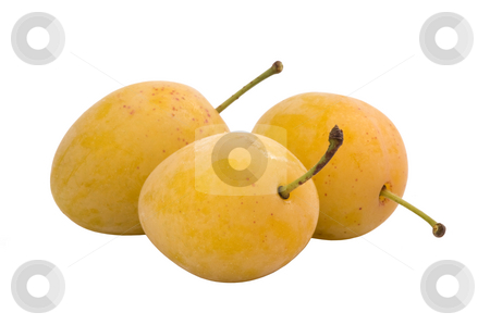 Ripe yellow plums  stock photo, Three ripe yellow  plums isolated on white by Valery Kraynov