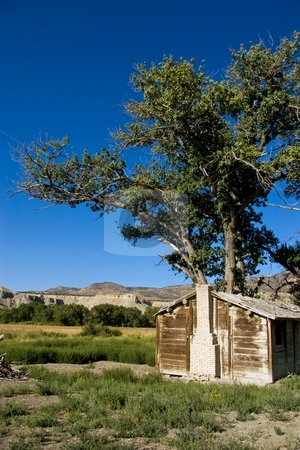 Southern Utah Home stock photo, Weathered homestead with a cottonwood tree in the desert. by Andrew Orlemann
