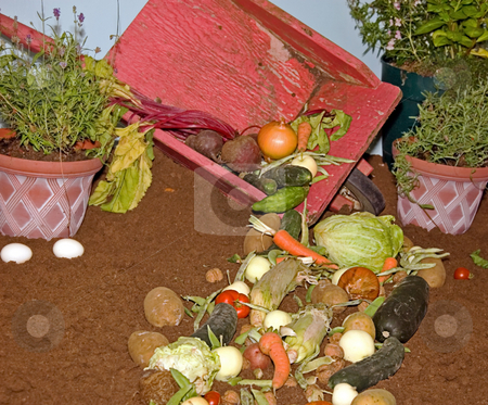 Vegetables Spilling Out of Wheelbarrow stock photo, This still life depicts various fresh vegetables spilling out of an antique wheelbarrow into dirt. by Valerie Garner