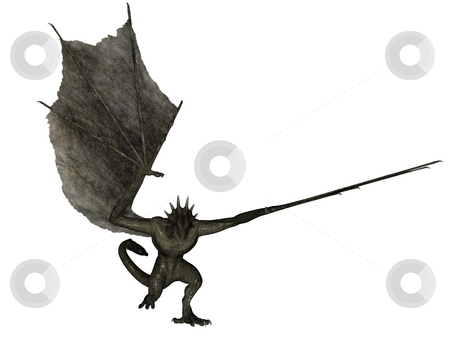 Charging wyvern stock photo, 3D rendered fantasy wyvern on white background isolated. by Patrik Ruzic