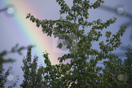 Rainbow colors stock photo, Rainbow in cloudy sky by Sharron Schiefelbein