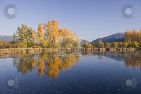 Autumn colors stock photo, Lake, mountains, Landscape, reflection, fall, autumn, ducks, birds, quiet. Peaceful, tranquil by Sharron Schiefelbein