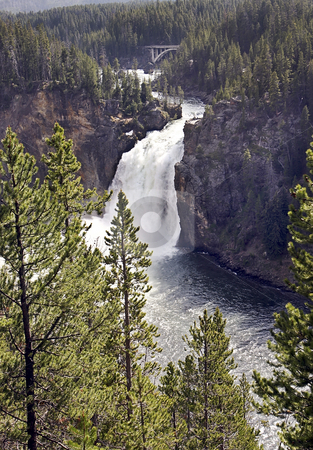 Yellowstone River falls stock photo, Yellowstone River falls by Sharron Schiefelbein
