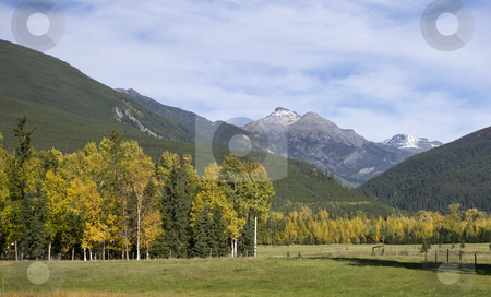 Field with mountains behind stock photo, Field with mountains behind by Sharron Schiefelbein
