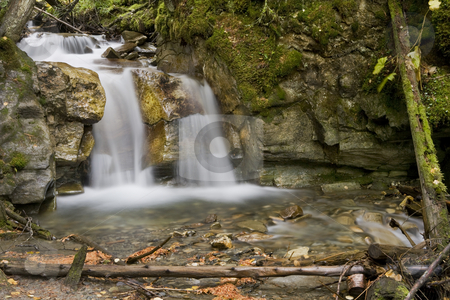 Small Waterfall stock photo, A beautiful Waterfall surrounds by a forest by Sharron Schiefelbein