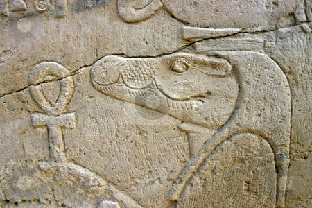 Wall of relief of the Crocodile God Sobek in Egypt stock photo, Wall of relief of the Crocodile God Sobek in Egypt by Sharron Schiefelbein