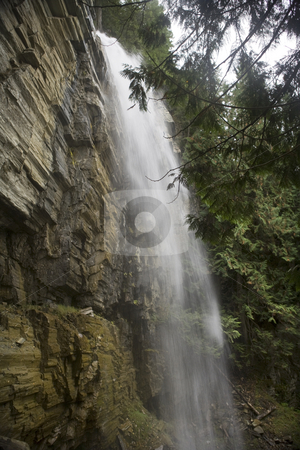 Long waterfall stock photo, A beautiful Waterfall surrounds by a forest by Sharron Schiefelbein