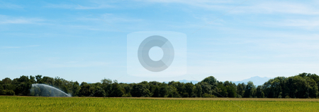 Panoramic countryside landscape stock photo, Panoramic landscape of a cornfield and an irrigation system with mountains on the background by Laurent Dambies