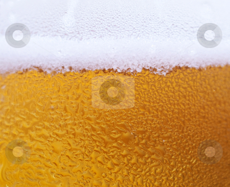 Beer backgound stock photo, Macro of a glass of fresh beer with water drop by Laurent Dambies