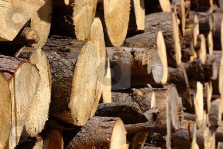 Pile of lumber stock photo, Pile of lumber drying in the sun by Andre Janssen