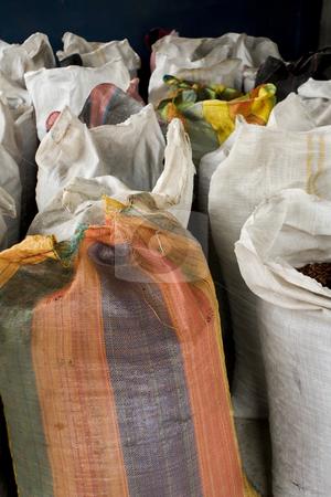 Cocoa bean bags in Peru stock photo, Cocoa bean bags in Peru by Sharron Schiefelbein