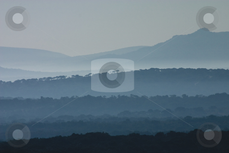 Umfolozi morning stock photo, Early morning day break at the Huluhluwe-Umfolozi Game Reserve, South Africa, showing misty hills and silhoutes of trees by Darren Pattterson