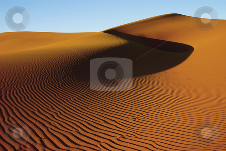 Golden sand dune stock photo, Golden sand dune in the evening light with blue sky and large shadow by Darren Pattterson