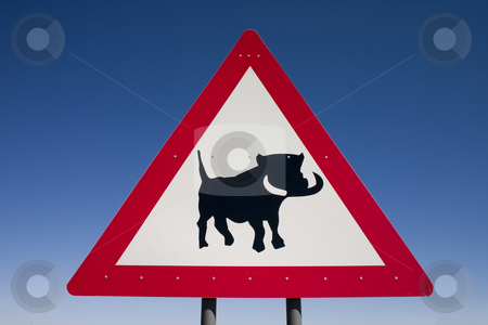 Warthog crossing stock photo, Close up of a warning sign for warthogs on the roadside in Namibia by Darren Pattterson