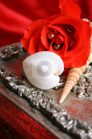 Valentine Gift stock photo, Silver gift box with a rose and seashells ontop by Vanessa Van Rensburg