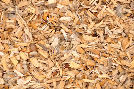 Wood chips stock photo, Wood chips by Robert Biedermann