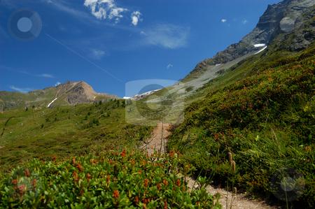 Path to the mountain stock photo, Path to the mountain (Simplon Pass, Switzerland) by ALESSANDRO TERMIGNONE