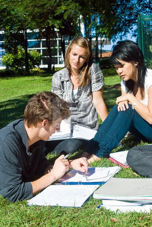 Reviewing notes stock photo, Three college students reviewing their notes in the park on a sunny day by Corepics VOF