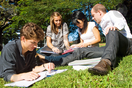 Comparing notes stock photo, Four university students comparing their notes from college, sitting in the park on a beautiful day by Corepics VOF