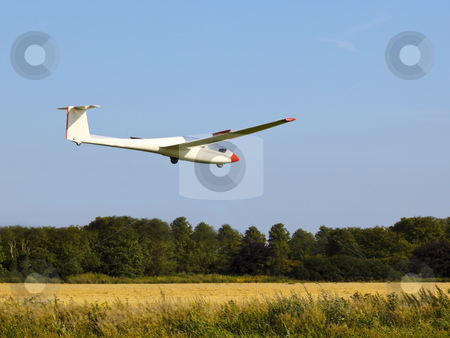Gliding in to land stock photo, A red and white glider coming in to land near a wheat field in summer by Mike Smith