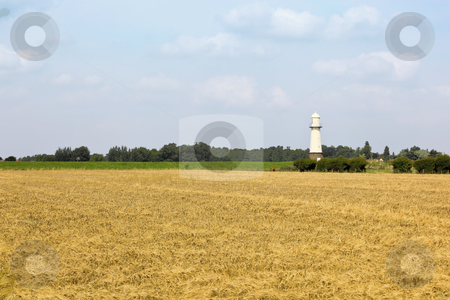 Lighthouse in summer stock photo, A white lighthouse shimmering in the heat in summer with wheat fields by Mike Smith